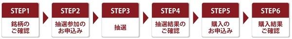 大和証券のIPO抽選参加サービス