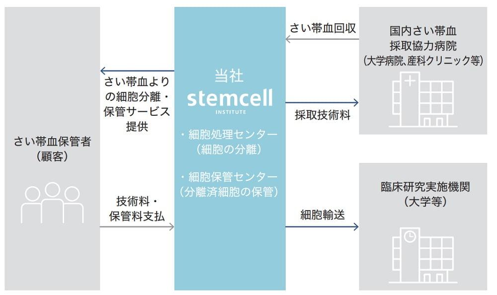 ステムセル研究所の事業系統図