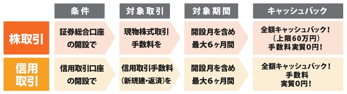 岩井コスモ証券のキャンペーン概要