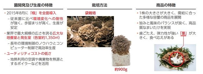 雪国まいたけのきのこの生産及び商品の特徴
